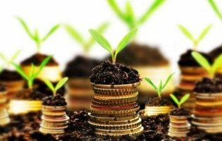 Aprenda a investir através de eBook gratuito