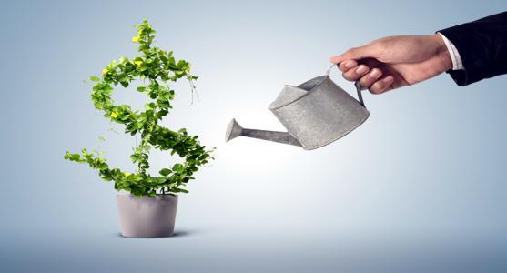 Sua idade e seus investimentos: conselhos aos jovens investidores