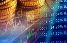 Investir em Ações e Bolsa de Valores: Kit Gratuito de Estudos