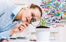 Seja um cientista dos investimentos