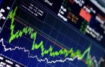 O que o investidor deve fazer quando empresas anunciam recompra de ações
