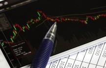 Vencendo na Bolsa: minhas impressões sobre a análise fundamentalista