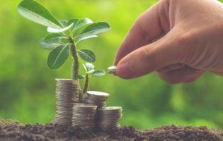 Aprenda como escolher os títulos do Tesouro Direto