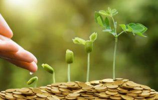 Como você investe o seu dinheiro? Sacoleiro ou trader da bolsa?