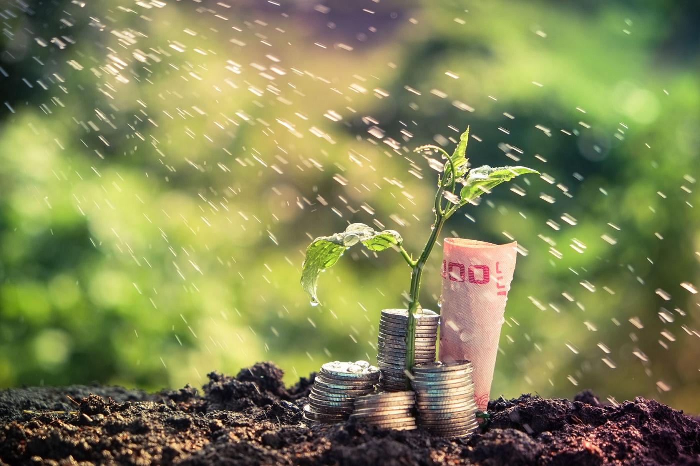 A estratégia consistente para começar com R$30 e alcançar R$1 Milhão