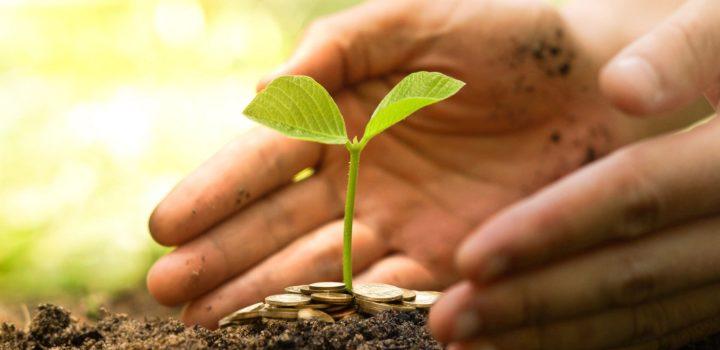 Investindo em negócios sustentáveis e com propósito