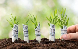 Quer começar uma Startup? Quer investir em uma Startup? Então veja isso!