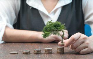 Onde e como investir mensalmente?