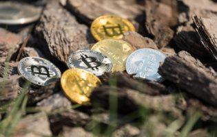 As 4 criptomoedas que mudarão sua vida de investidor
