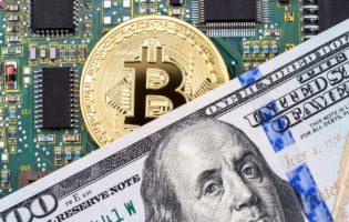 3 moedas digitais escolhidas para você investir e lucrar