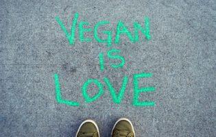 Veganismo também é negócio? Conheça o Açougue Vegano
