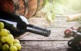 Startup de Vinho: Uma Entrevista que Vai Mostrar Como Tudo Funciona