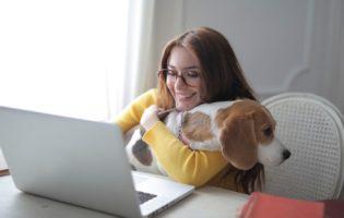 Trabalho em casa: mulher com cachorro e notebook